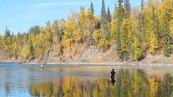 Fishwest's Bulkley River Lodge Fly Fishing Trip
